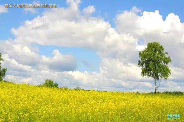 我心中的草原-呼伦贝尔