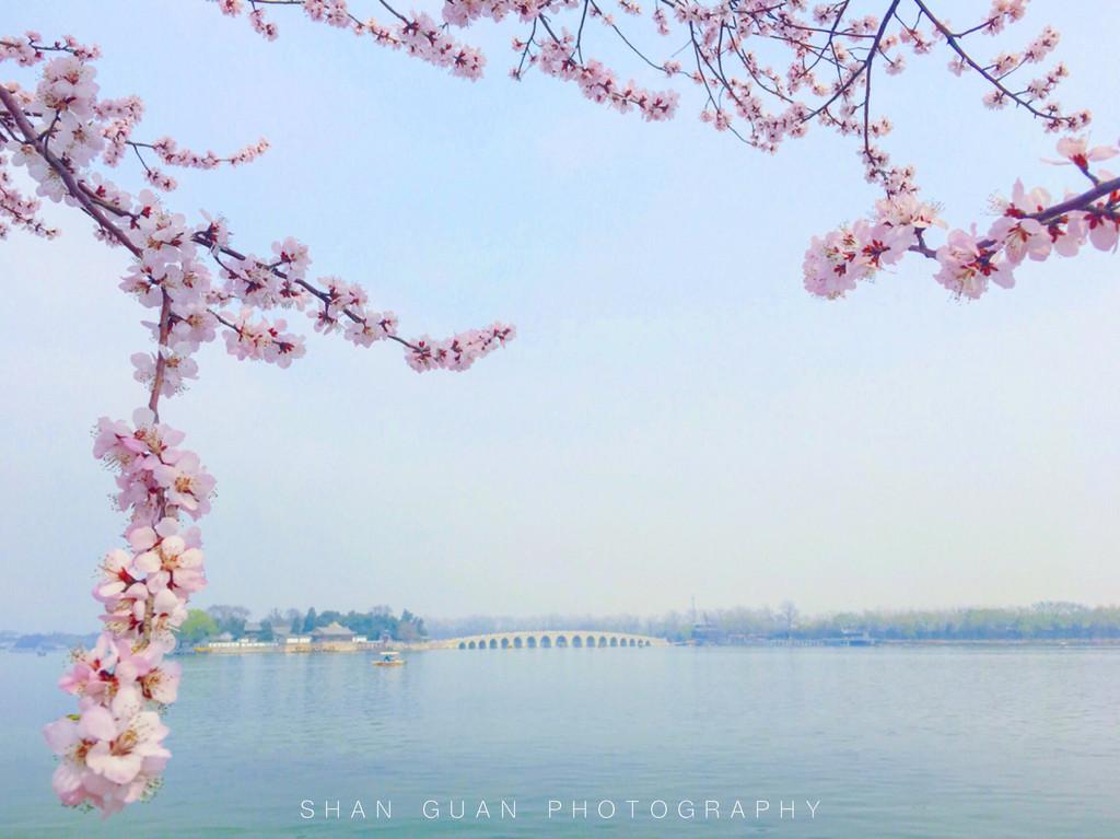 远景春天风景图