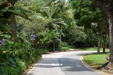 肯特岗公园-新加坡-C_image