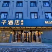桔子酒店•精選(蘇州寒山寺店)